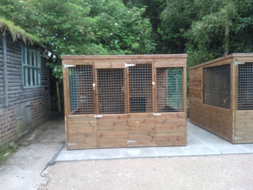 By  Dog Kennel